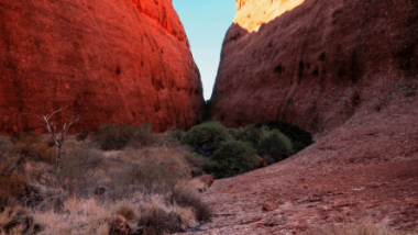 Top End Rock Art and Wilderness Experience