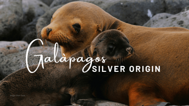 Silver Origin – the First Luxury Expedition Cruise Ship in the Galapagos