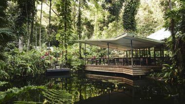 Daintree Eco Lodge, Daintree Rainforest