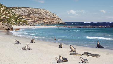 South Australia – Luxury Holidays